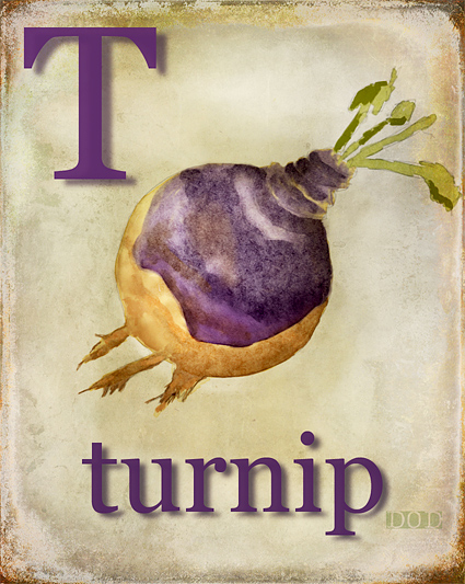 T is for Turnip